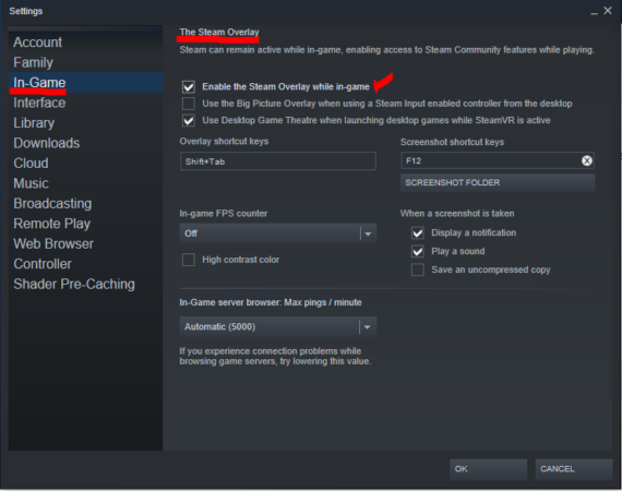 Steam overlay check box